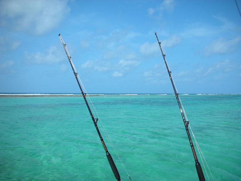 fishing_poles
